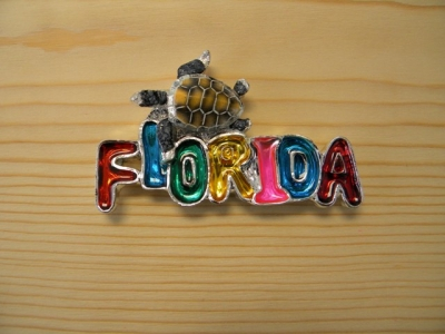 Plated Resin Magnet - Florida Logo with Turtle (Florida Only)