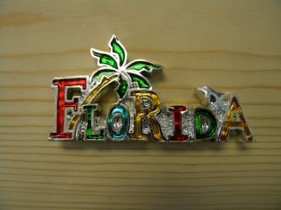 Plated Resin Magnet - Florida Logo with Palm tree (Florida Only)