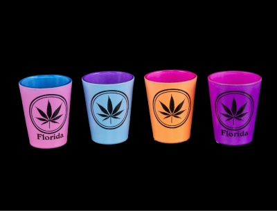 Double Neon Shot Glass w/ Leaf Design - 4 Assorted Colors