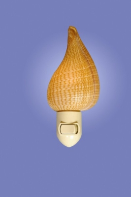 Fig Shell Night Light
