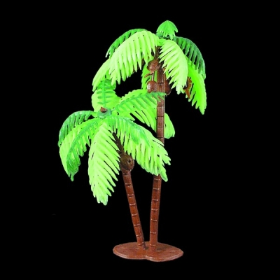 Double Palm Tree - Large