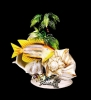 Fox Shells w/ Tropical Fish Arrangement